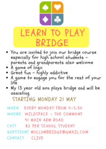 BRIDGE LESSONS FOR KIDS! @ wildspace